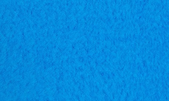 BLUE ASTER