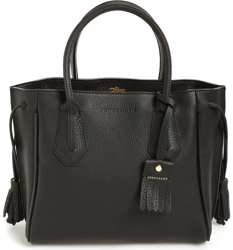 1255d75c6c Longchamp 'Small Penelope' Leather Tote | Nordstrom
