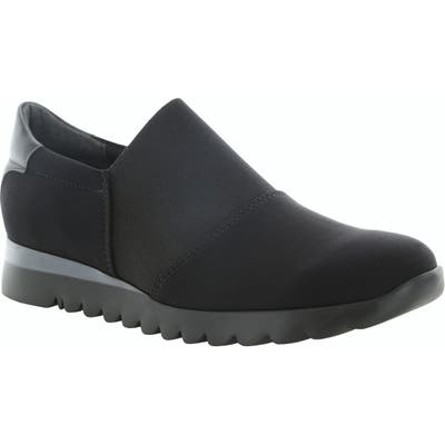 Munro Kj Slip-On Sneaker- Black