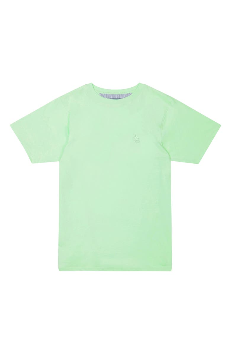 TOM & TEDDY Solid T-Shirt, Main, color, PISTACHIO