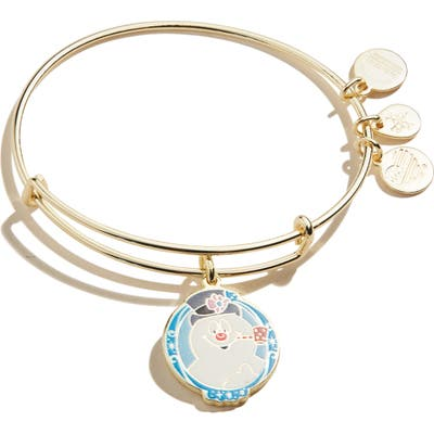 Alex And Ani Frosty The Snowman Adjustable Wire Bangle
