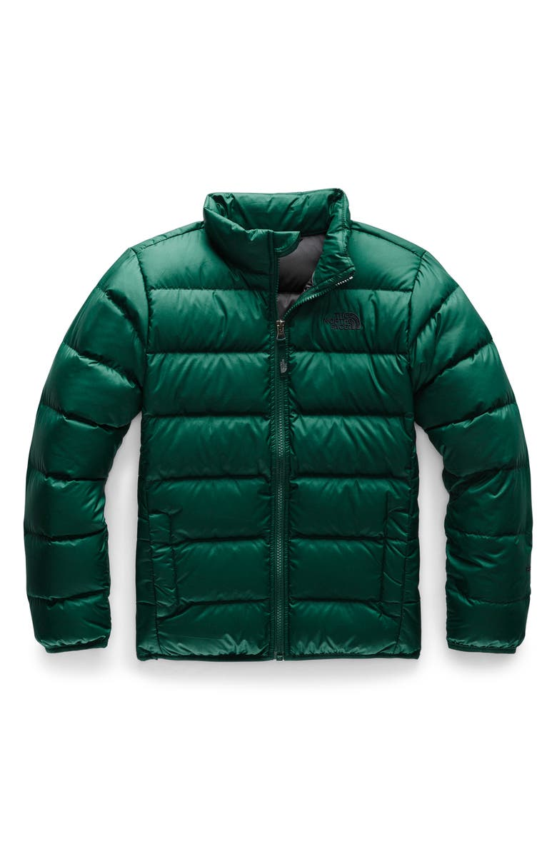THE NORTH FACE Andes Water Repellent 550-Fill Power Down Jacket, Main, color, NIGHT GREEN