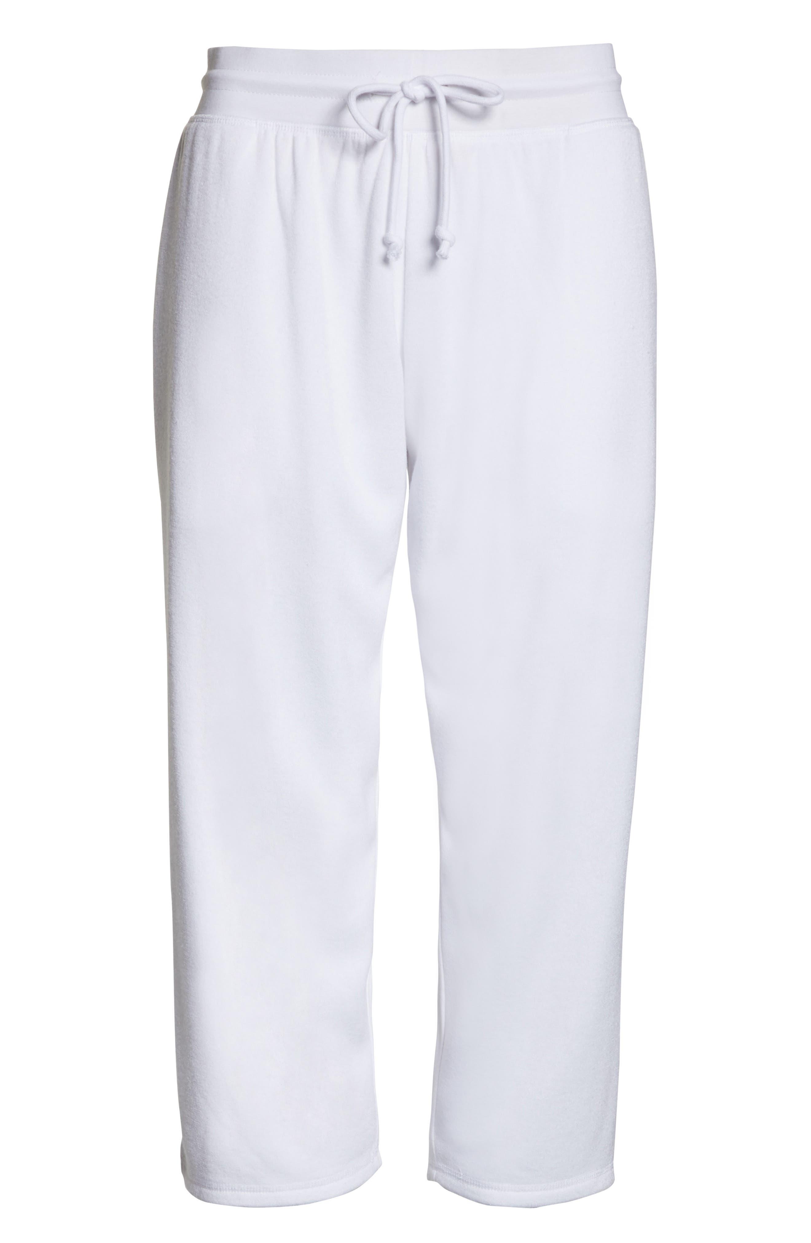 ,                             Cropped Fleece Pants,                             Alternate thumbnail 13, color,                             100