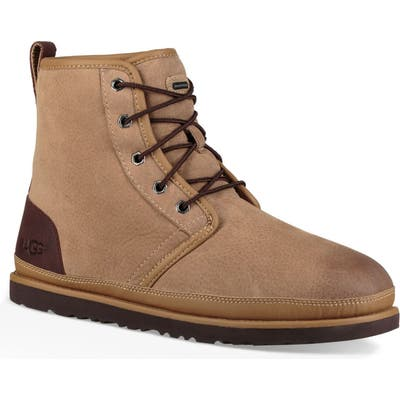 UGG Harkley Waterproof Lace-Up Boot, Brown