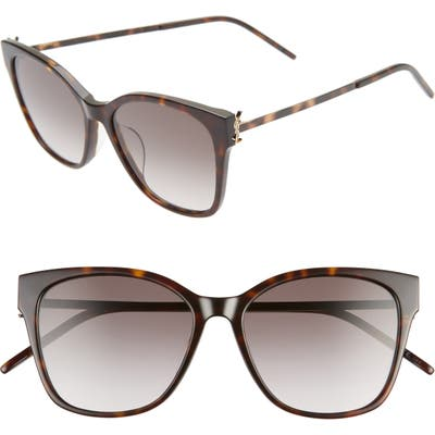 Saint Laurent 5m Rectangular Sunglasses - Shiny Dark Havana/ Grey Grad