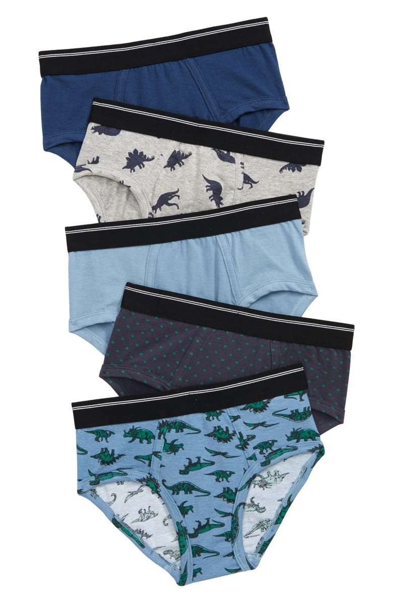 TUCKER + TATE Kids' Assorted 5-Pack Briefs, Main, color, SKETCH DINO PACK