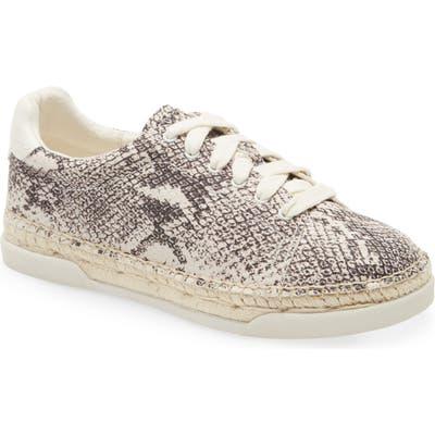 Dolce Vita Madox Sneaker, Grey