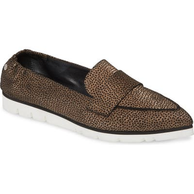 Agl Micro Pointed Toe Loafer - Brown