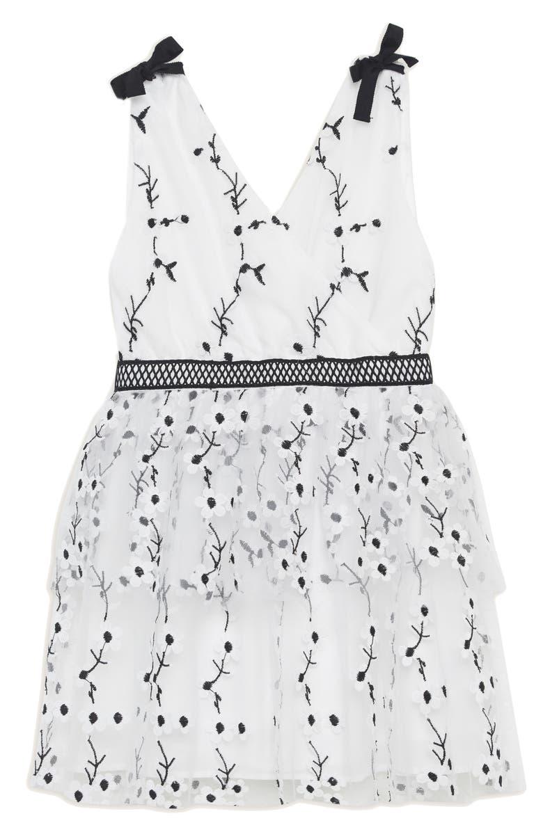 BARDOT Carolina Embroidered Sleeveless Dress, Main, color, 177