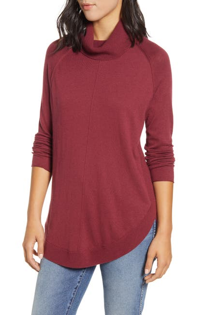 Image of Caslon Turtleneck Tunic Sweater