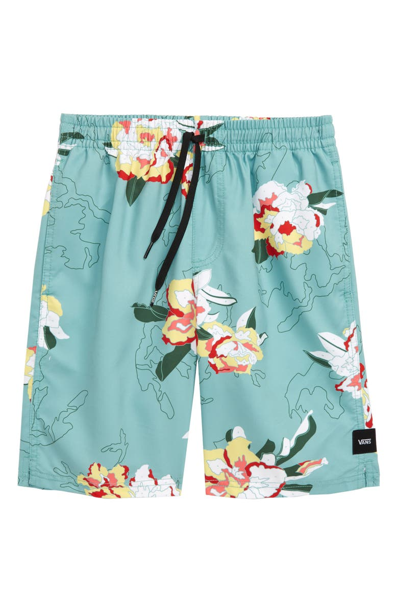 VANS Mixed Volley Shorts, Main, color, CANTON PAINT BY NUMBERS