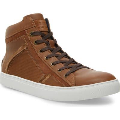 Steve Madden Melvin Sneaker- Brown