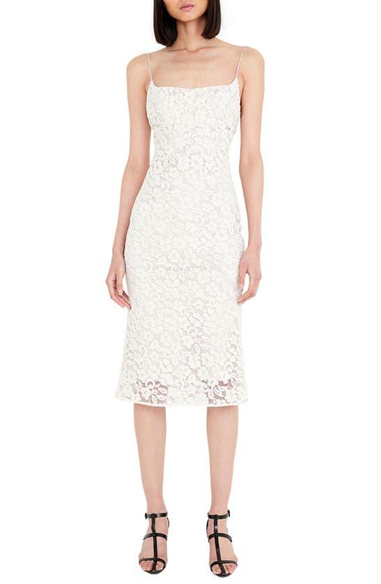 Bardot Midi dresses SLEEVELESS LACE DRESS