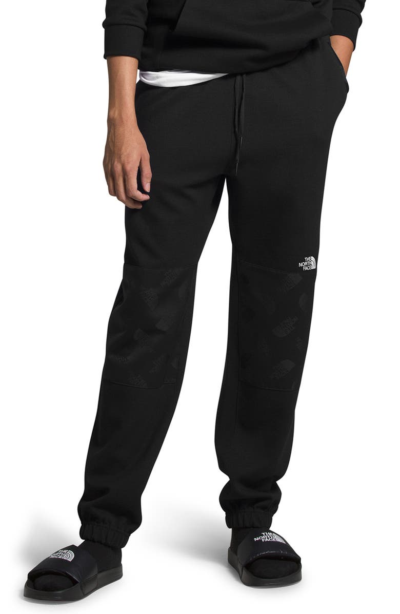 THE NORTH FACE Graphic Collection Fleece Pants, Main, color, 001