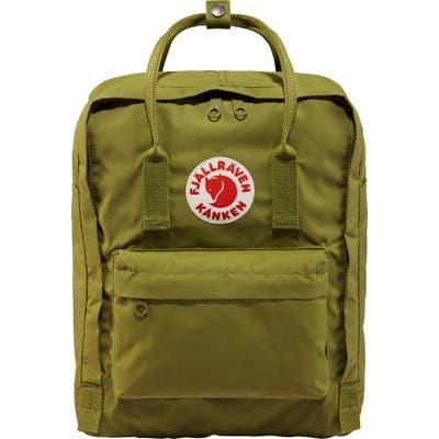 Fjallraven Kanken Water Resistant Backpack - Green