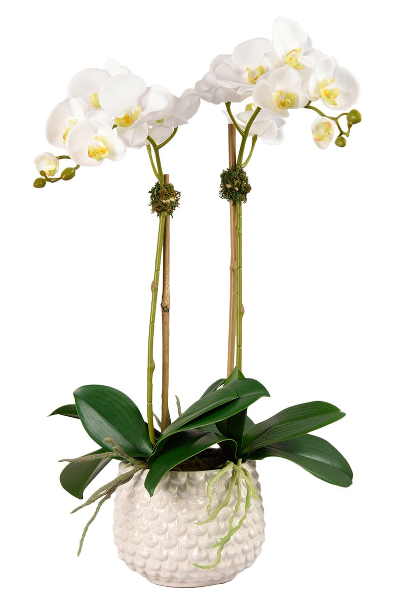 BLOOMR Pearl Orchid Planter Decoration, Main, color, WHITE
