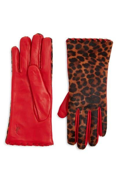 Polo Ralph Lauren Leopard Print Genuine Calf Hair Gloves In Leopard/ Ralph Red
