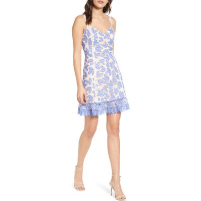Endless Rose Lace Fit & Flare Dress, Blue