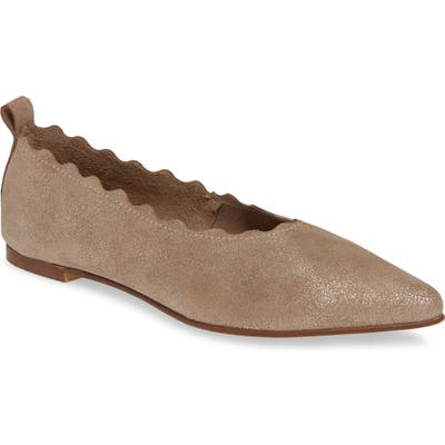Klub Nico Naomi Scallop Pointy Toe Flat, Grey
