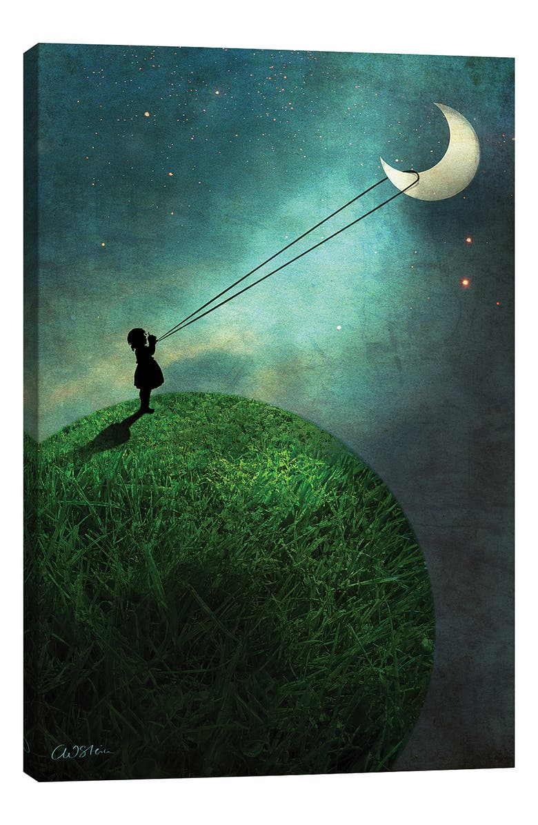 ICANVAS Chasing the Moon by Catrin Welz-Stein Giclée Print Canvas Art, Main, color, BLACK