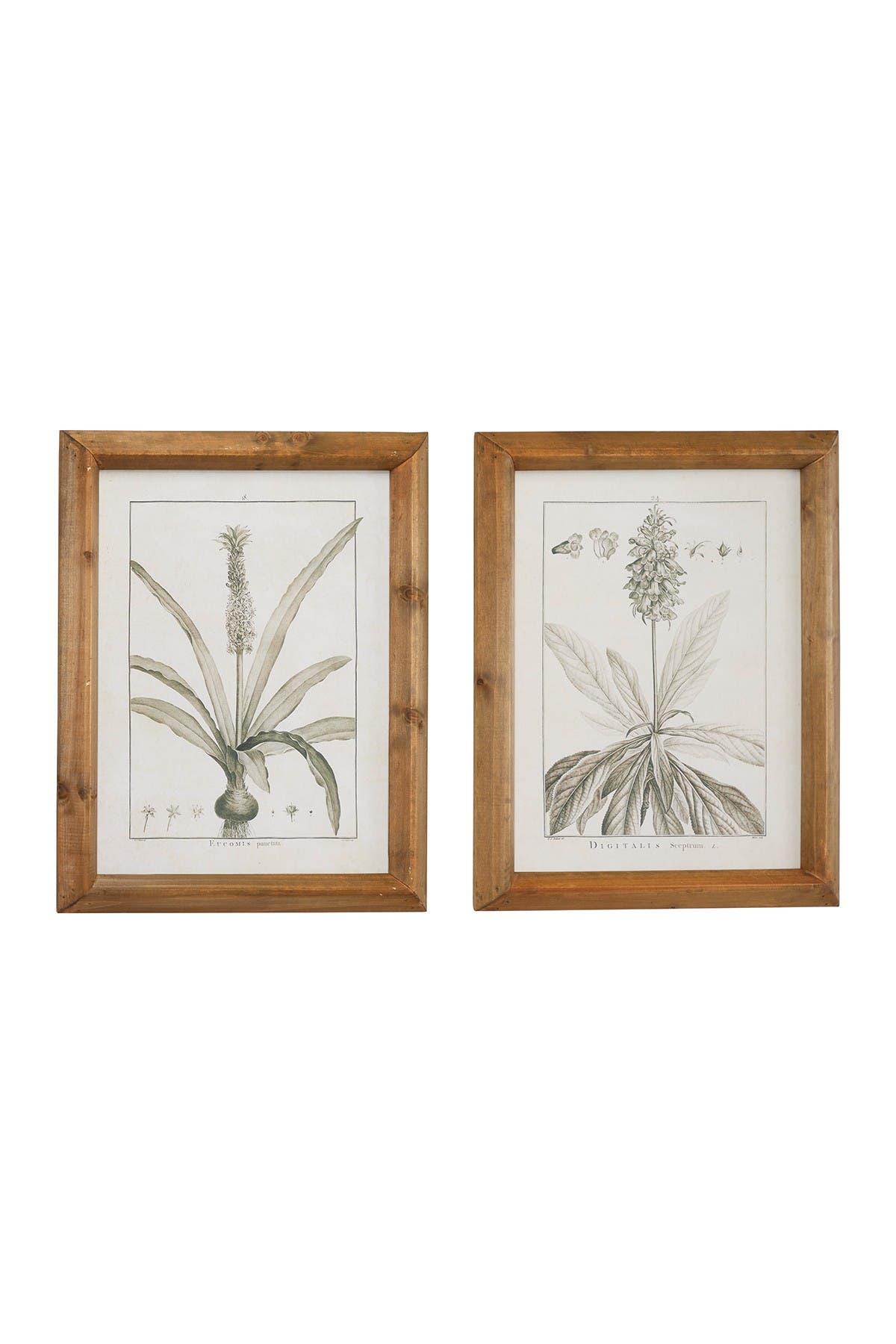 Image of Willow Row Large Black & White Vintage Botanical Prints in Natural Wood Frames - Set of 2