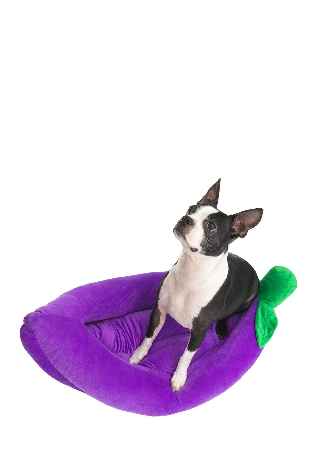 Image of Duck River Textile Benjy Fruit Pet Bed - Grape