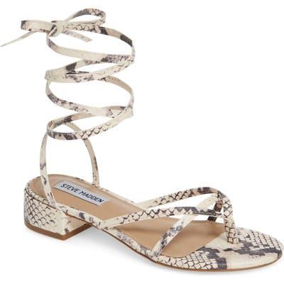 Steve Madden Cherie Lace-Up Sandal, Beige