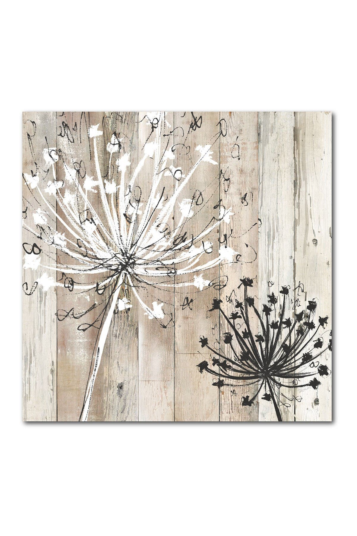 Courtside Market Farmhouse Fluff Gallery Wrapped Canvas Wall Art Nordstrom Rack