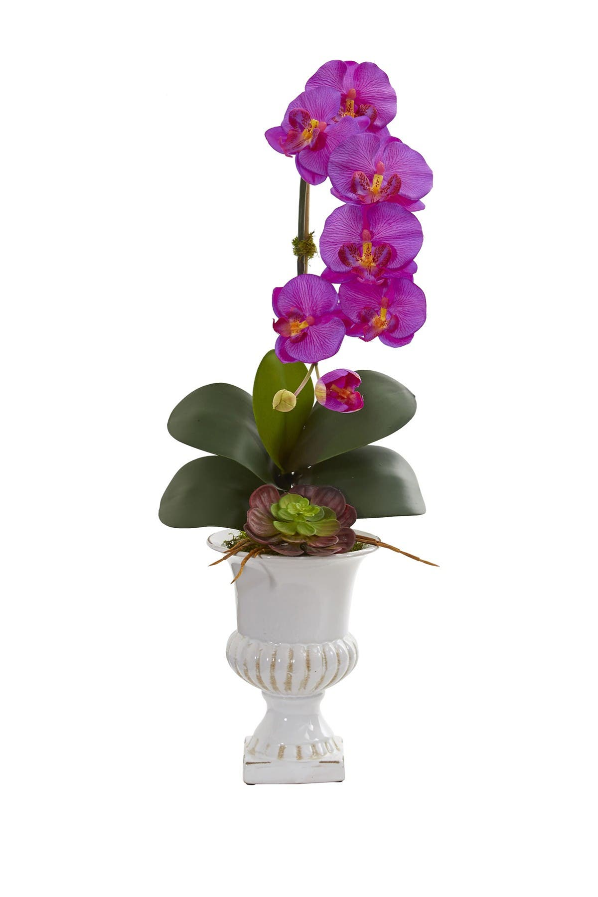 Nearly Natural Phalaenopsis Orchid And Succulent Artificial Arrangement In Urn Purple Nordstrom Rack