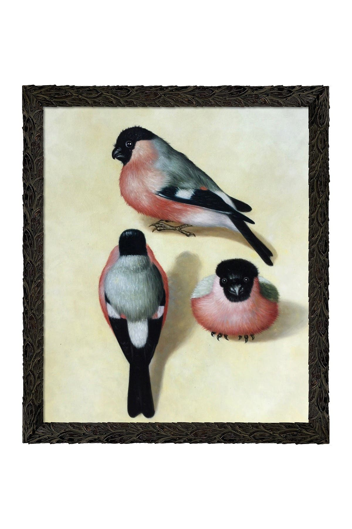 """Image of Overstock Art Three Bullfinches with Feathered Ebony Frame, 23.24"""" x 27.24"""""""