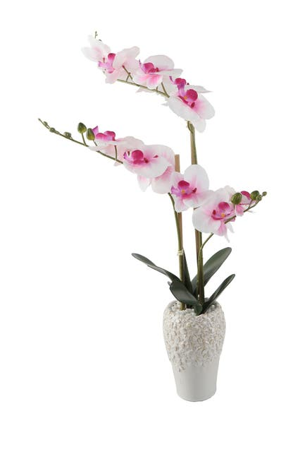 "Image of FLORA BUNDA 20"" Real-Touch Orchid in 5"" x 8"" Ceramic Vase"