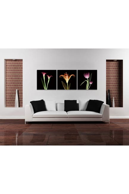 """Image of Chic Home Bedding Tropical 3-Piece Wall Art - 27.5""""x82.5"""""""