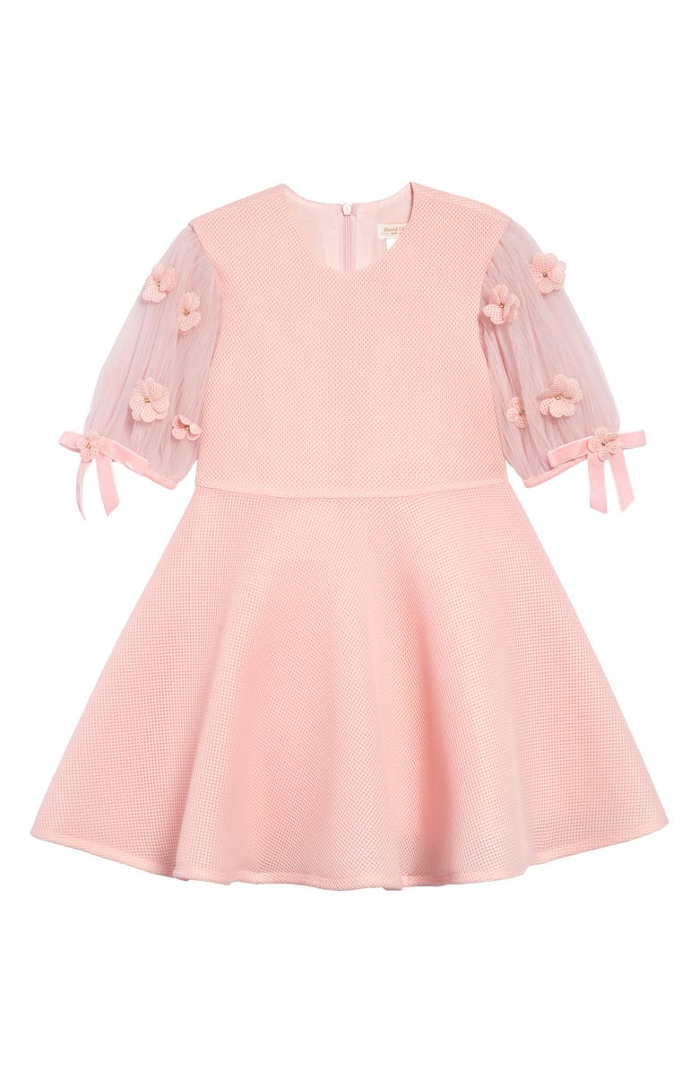 DAVID CHARLES Mesh Fit & Flare Dress, Main, color, PINK