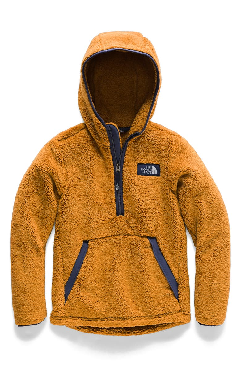 8a1466ab2 The North Face Campshire Pullover Hoodie (Big Boys) | Nordstrom