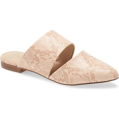 Coconuts By Matisse Shay Mule, Pink