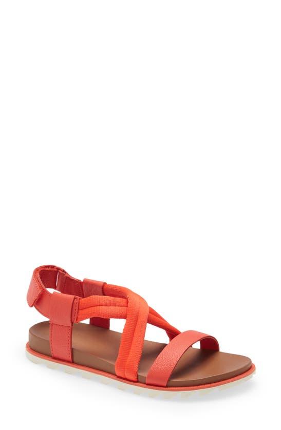 Sorel Women's Roaming Decon Sandals Women's Shoes In Signal Red