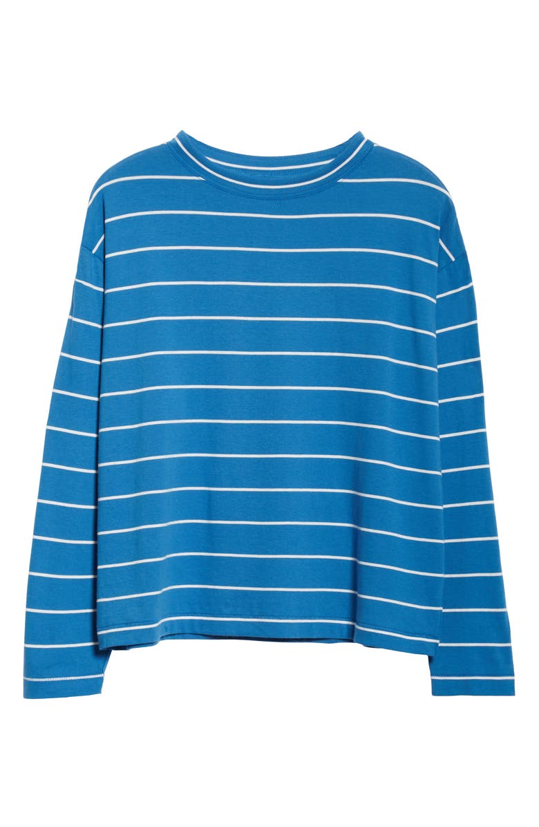 ENTIREWORLD Type C Version 9 Stripe Long Sleeve Tee, Main, color, BLUE WHITE