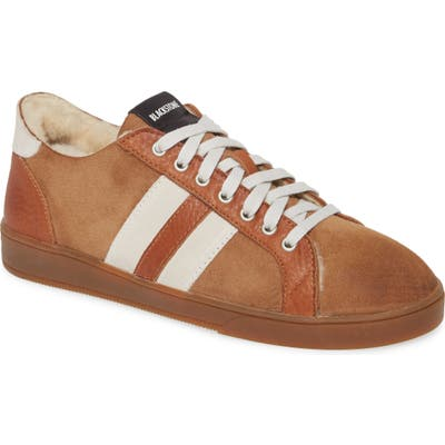 Blackstone Sl88 Genuine Shearling Lined Sneaker, Brown