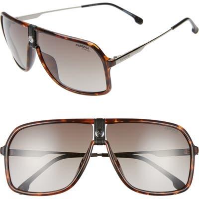 Carrera Eyewear Navigator Sunglasses - Dark Havana