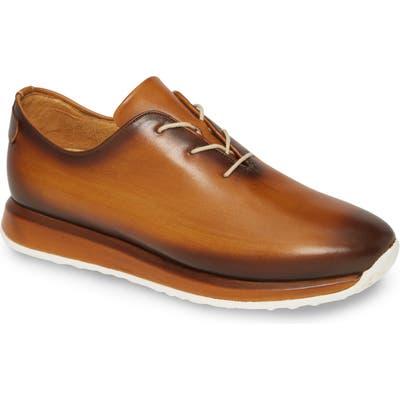 Mezlan Brahman Sneaker, Brown