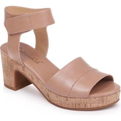 Splendid Thatcher Platform Ankle Strap Sandal, Beige