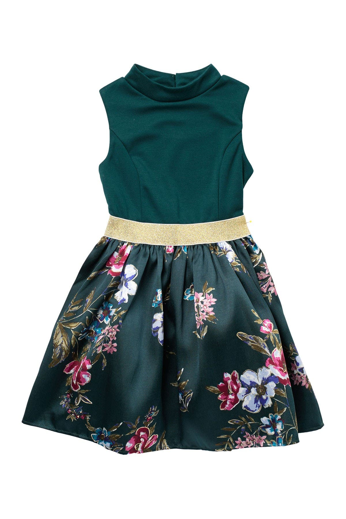 Image of Zunie Mock Neck Sleeveless Floral Print Fit & Flare Dress