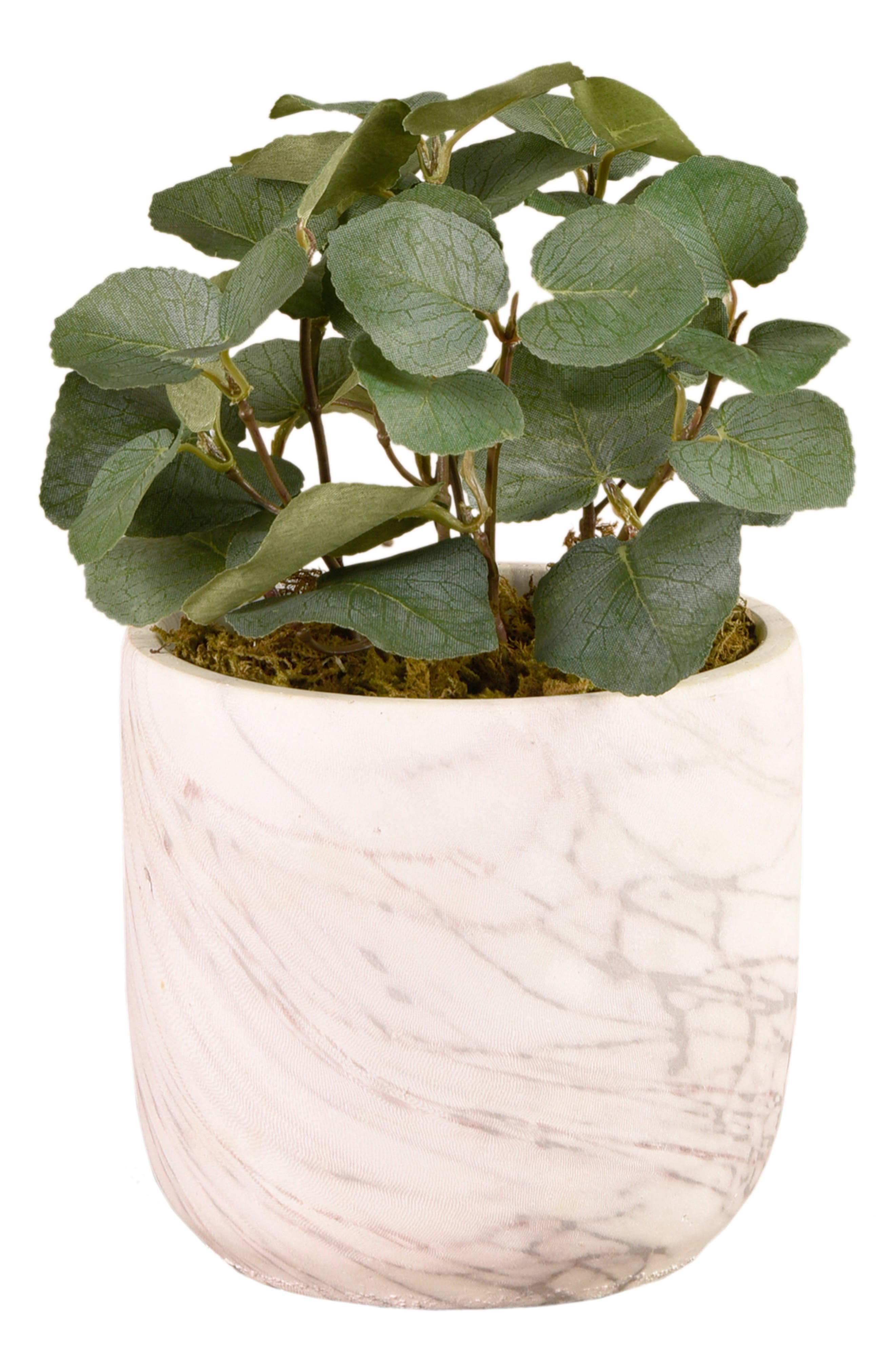 There\\\'s no need for a green thumb when you\\\'ve got this charming florist-designed faux eucalyptus sitting cheerily in a marbled concrete pot. The design serves as a perfect complement to any modern or classical decor. Style Name: Bloomr Potted Eucalyptus Planter Decoration. Style Number: 6090697. Available in stores.