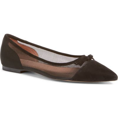 Halogen X Atlantic-Pacific Sadee Pointed Toe Flat- Black (Nordstrom Exclusive)