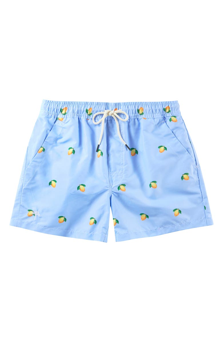 OAS SWIM Lemon Swim Trunks, Main, color, LIGHT BLUE