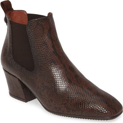 Hispanitas Andry Chelsea Boot - Brown