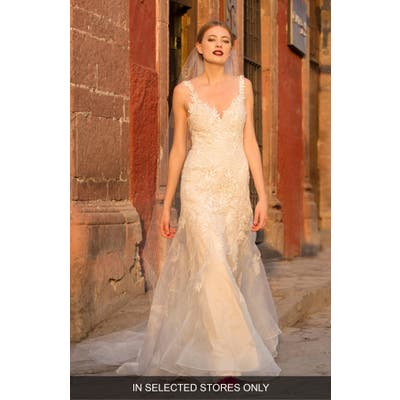Watters Aiko Embroidered Silk Organza Trumpet Gown