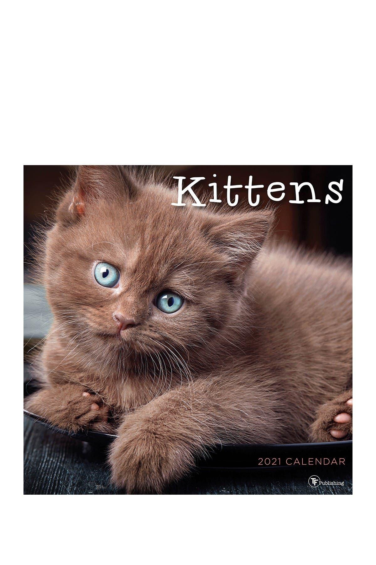 Image of TF Publishing 2021 Kittens Wall Calendar