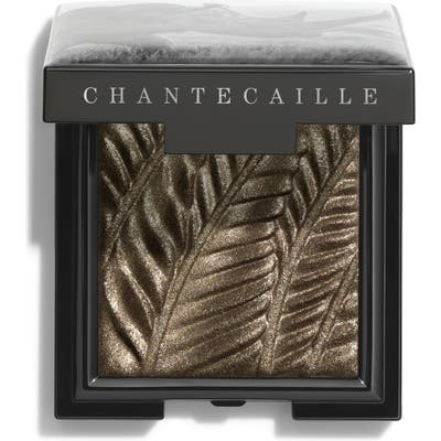Chantecaille Luminescent Eye Shade - Rhino