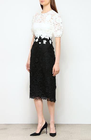 Contrast Bodice Lace Sheath Dress, video thumbnail
